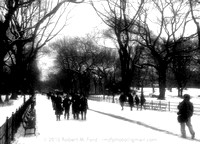 Central Park - Winter